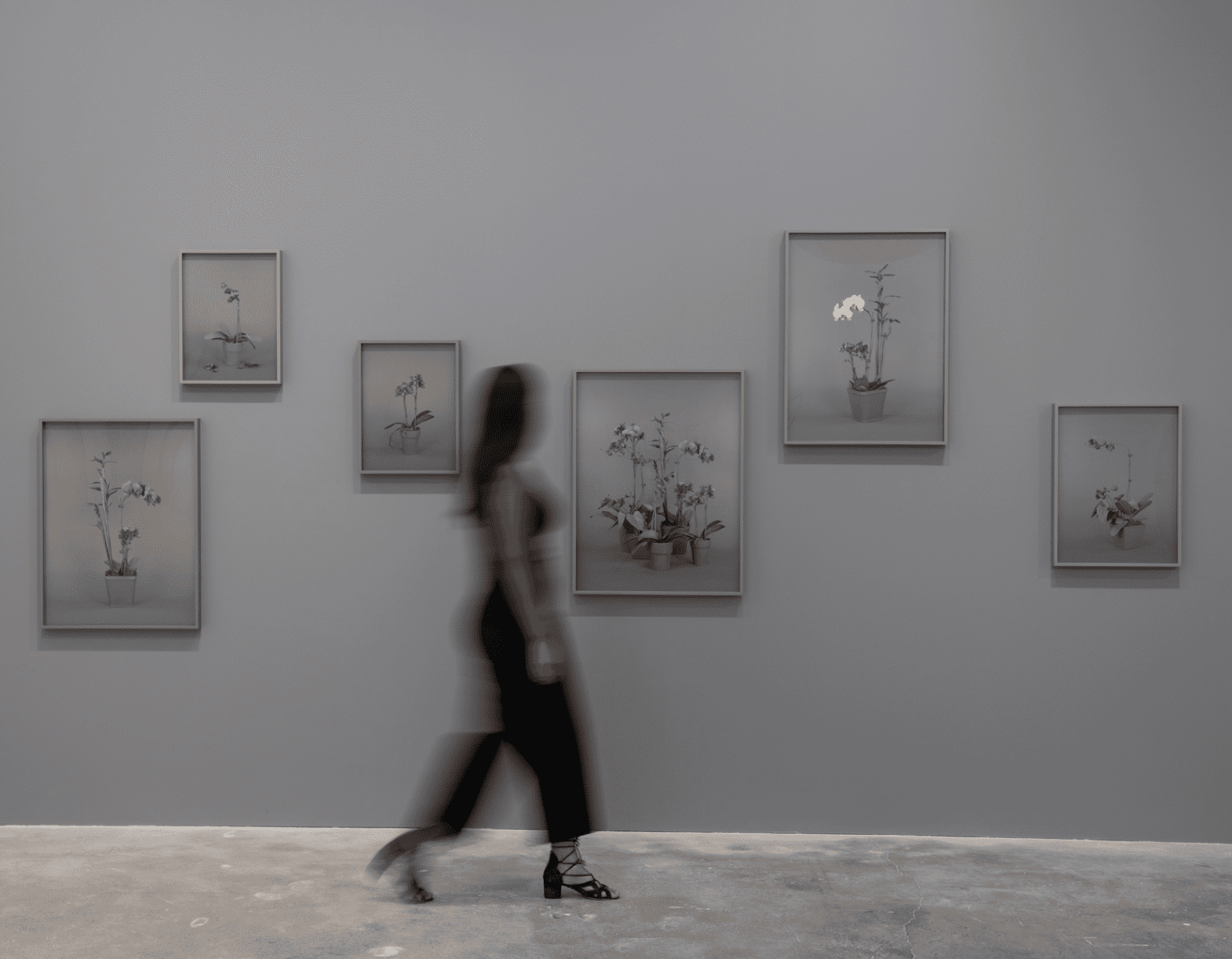Installation view of solo exhibition